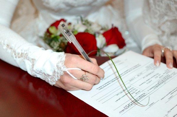 брачный контракт и материнский сертификат его глаза