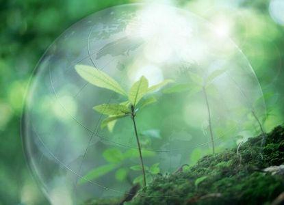 Юридическая ответственность в экологии