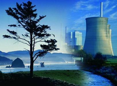 Юридическая ответственность за экологические нарушения