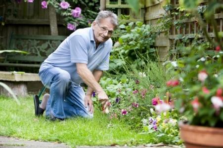 Юридическая помощь садоводам