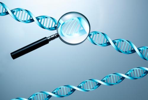 Где можно сдать генетический анализ