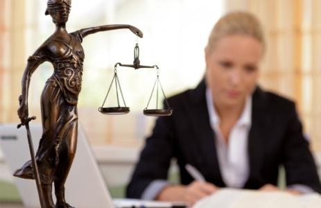 Государственные юридические услуги