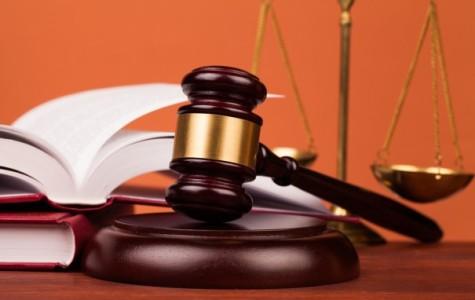 Кассации и апелляции различия